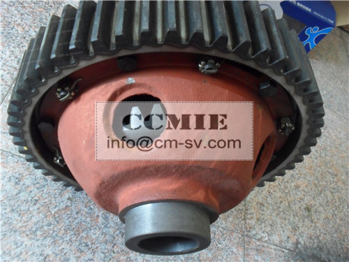 OEM New XCMG Road Roller Parts Differential Asphalt Paver Use
